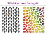 which item does dudu get