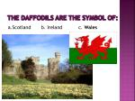 the daffodils are the symbol of