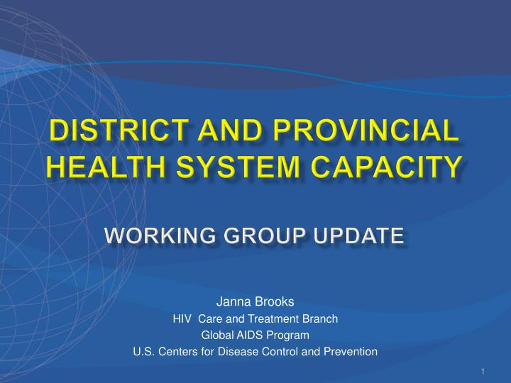 district and provincial health system capacity working group update n.