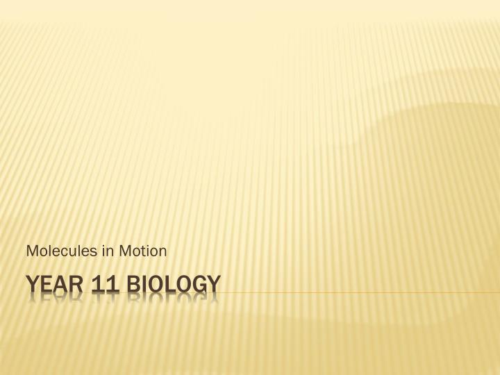 molecules in motion