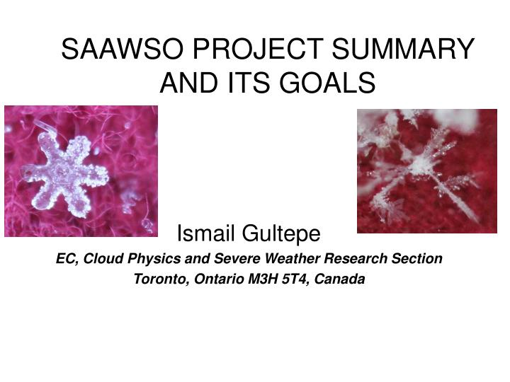 Saawso project summary and its goals