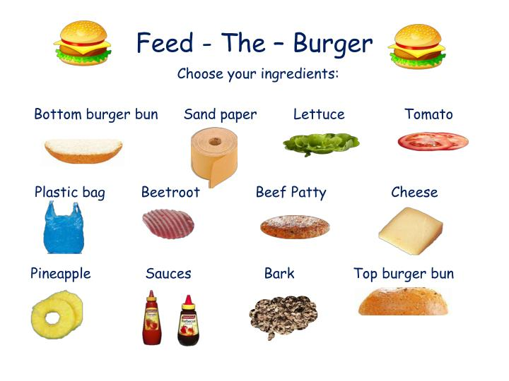 feed the burger