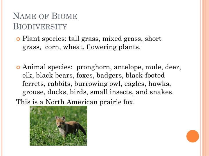 Name of biome biodiversity