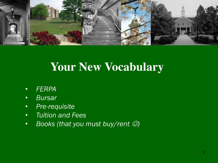 Your New Vocabulary