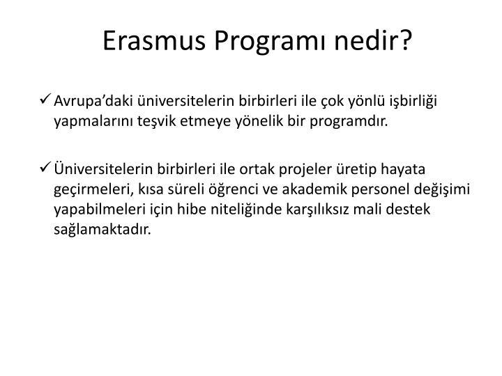 Erasmus Programı nedir?
