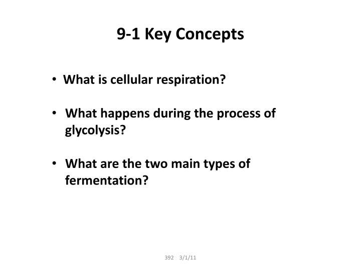 9 1 key concepts