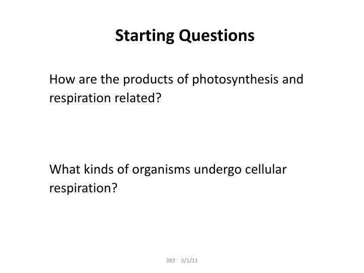 Starting questions