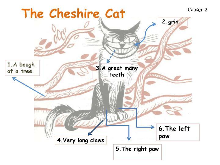 The cheshire cat1