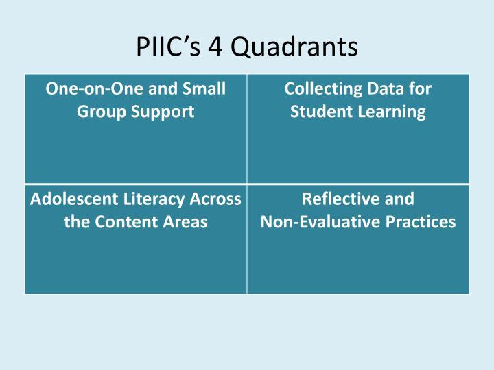 PIIC's 4 Quadrants