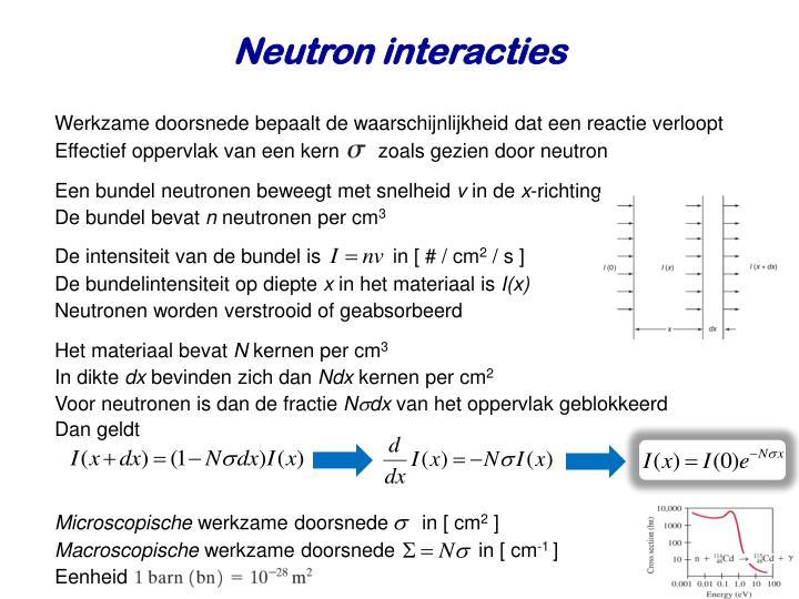 Neutron interacties