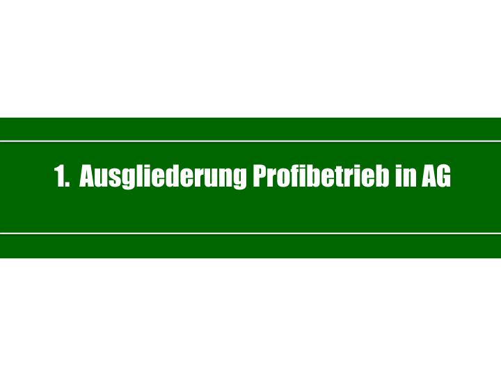 1.  Ausgliederung Profibetrieb in AG