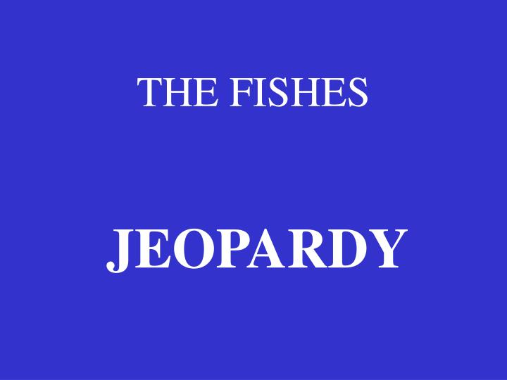 the fishes n.