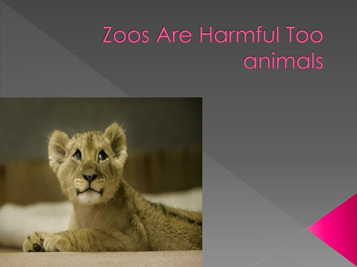 zoos are harmful too animals n.
