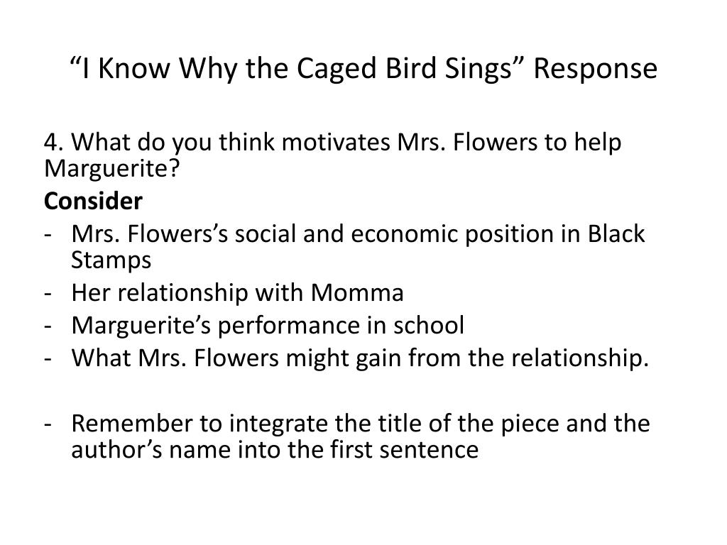 i know why the caged bird sings page count