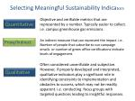 selecting meaningful sustainability indica tors