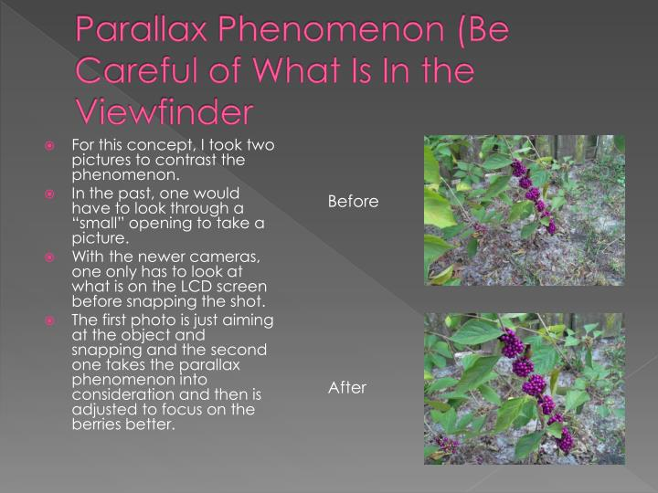 Parallax Phenomenon (Be Careful of What Is In the Viewfinder