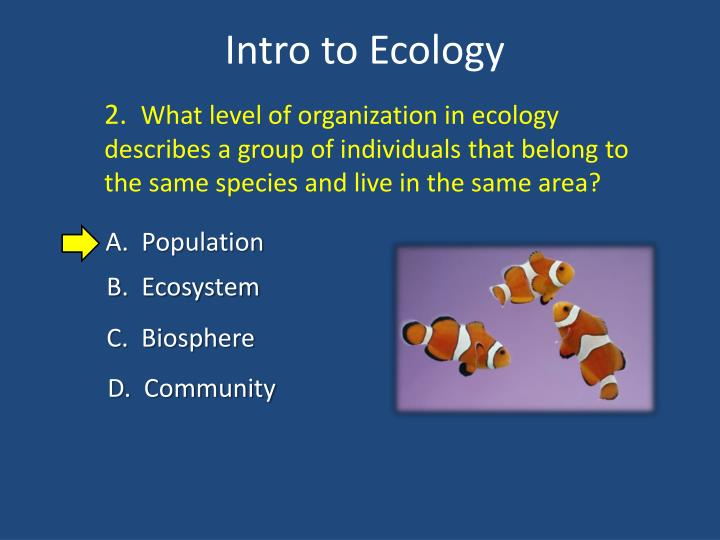 Intro to ecology2