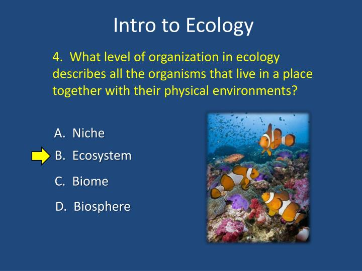 4.  What level of organization in ecology describes all the organisms that live in a place together with their physical environments?
