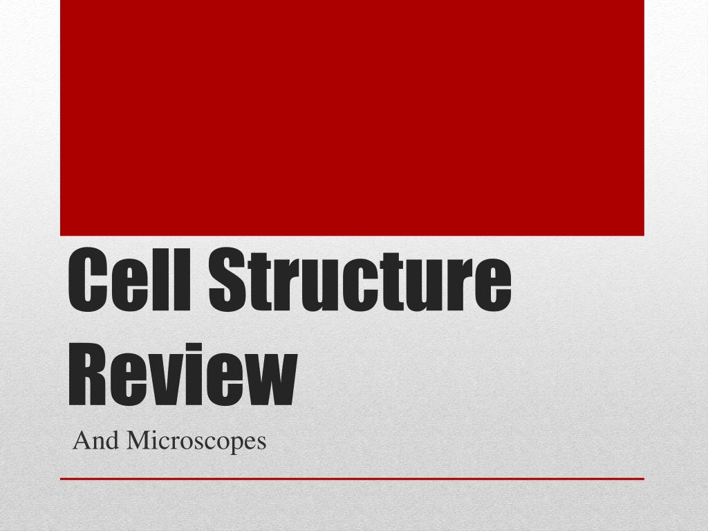 Ppt Cell Structure Review Powerpoint Presentation Id2822541 Prokaryotic Cells N