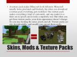 skins mods texture packs2