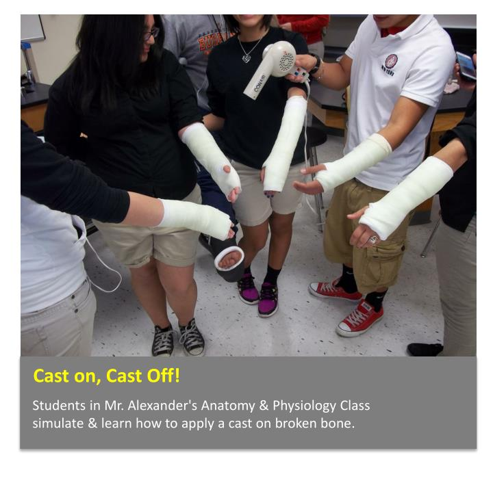 Cast on, Cast Off!