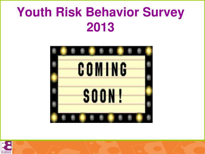 Youth Risk Behavior Survey 2013