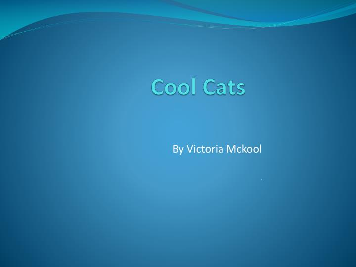 cool cool cats cats cool cats n.
