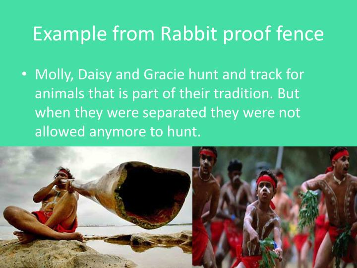 Example from Rabbit proof fence