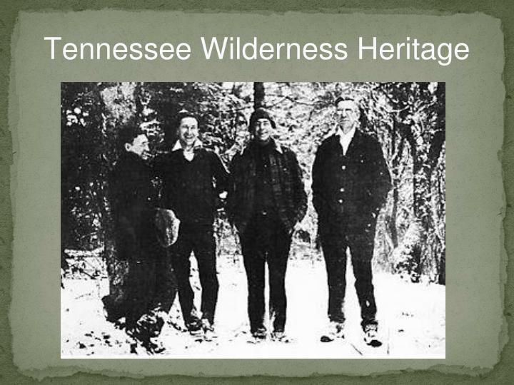 Tennessee Wilderness Heritage