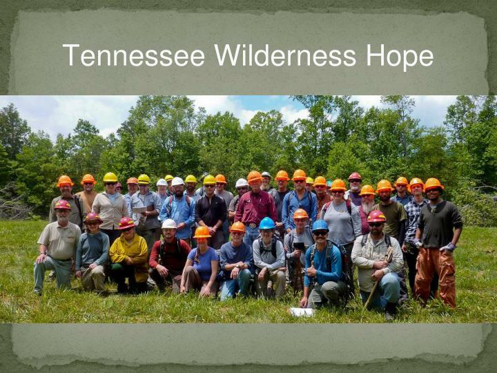 Tennessee Wilderness Hope