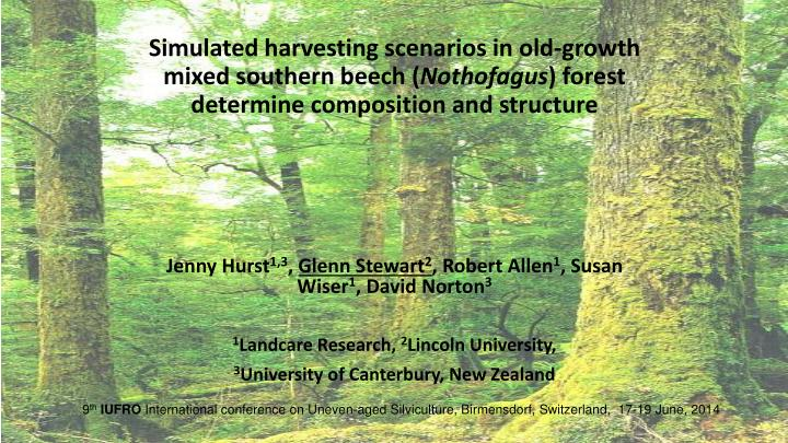 Simulated harvesting scenarios in old-growth mixed southern beech (