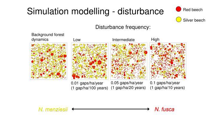 Simulation modelling - disturbance