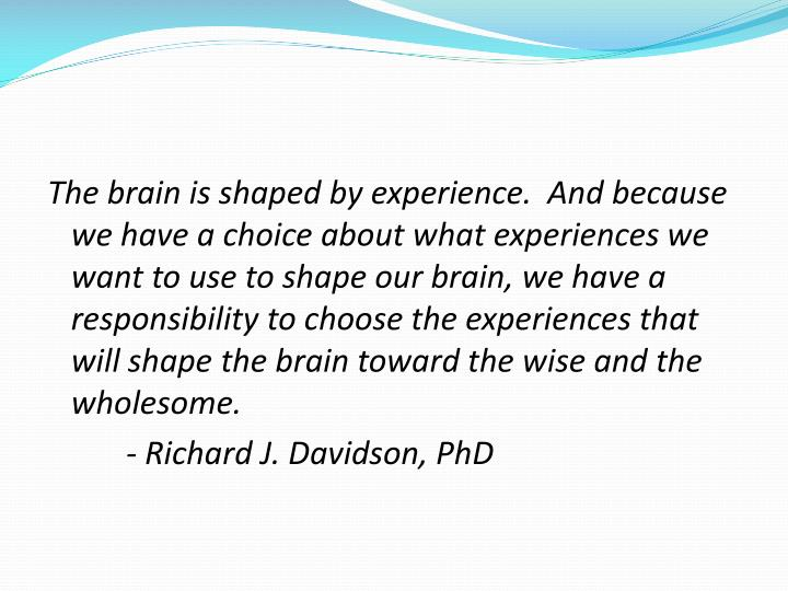The brain is shaped by experience.  And because we have a choice about what experiences we want to use to shape our brain, we have a responsibility to choose the experiences that will shape the brain toward the wise and the wholesome.