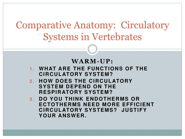 Ppt Comparative Anatomy Circulatory Systems In Vertebrates