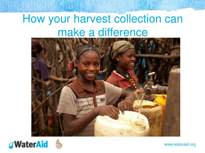 How your harvest collection can make a difference