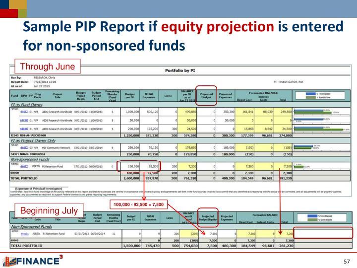 Sample PIP Report if
