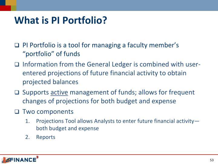 What is PI Portfolio?