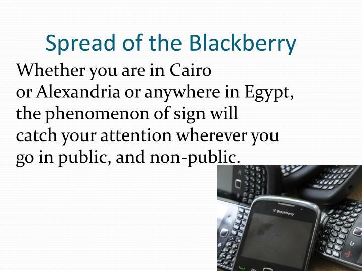 Spread ofthe Blackberry
