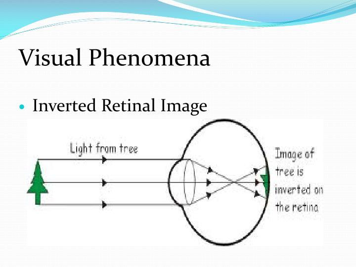 Visual Phenomena