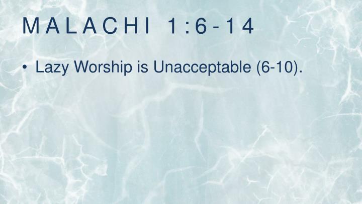 Malachi 1 6 14