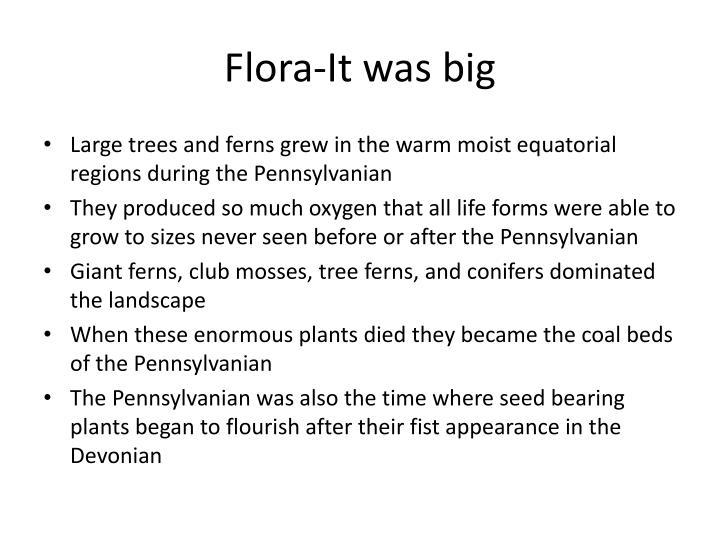 Flora-It was big