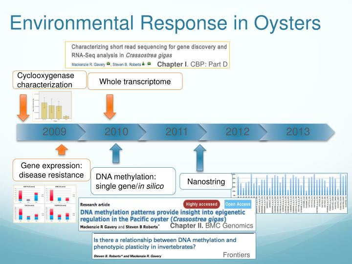 Environmental Response in Oysters