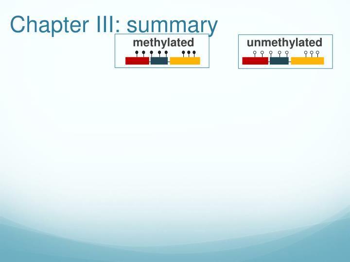Chapter III: summary