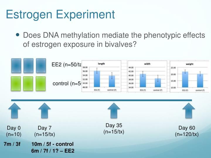 Estrogen Experiment