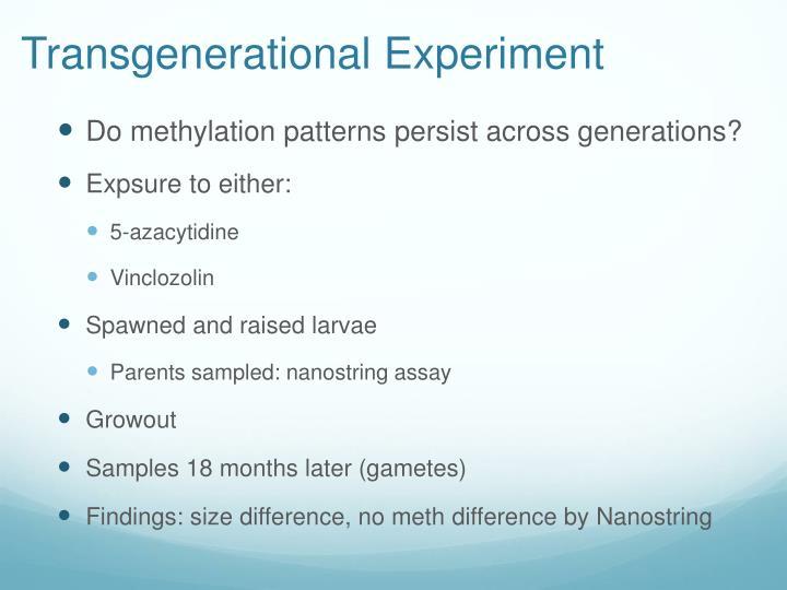 Transgenerational Experiment