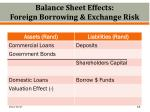 balance sheet effects foreign borrowing exchange risk