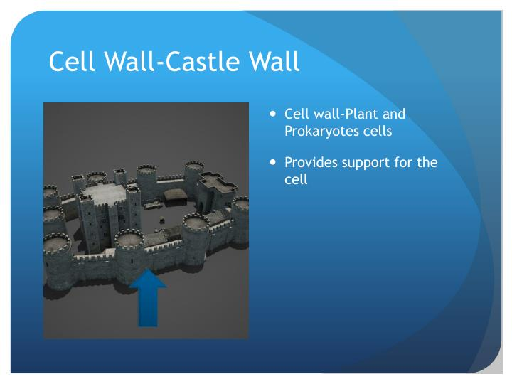 Cell Wall-Castle Wall