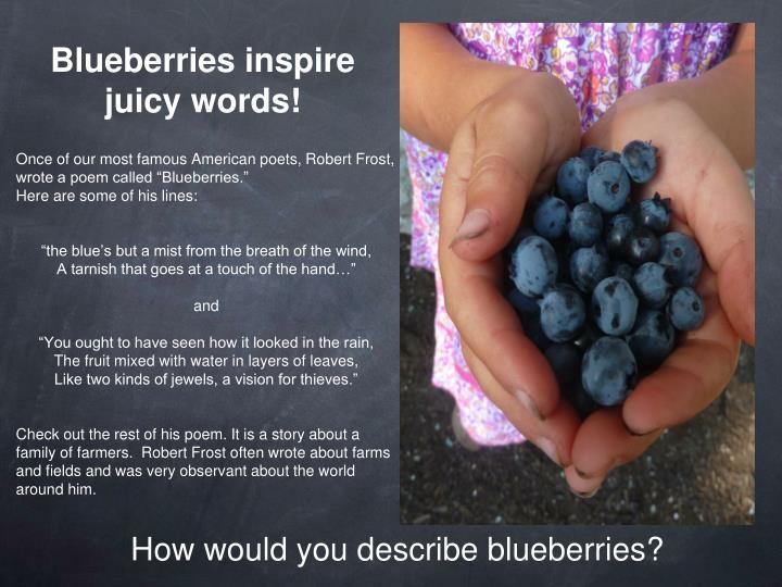 Blueberries inspire juicy words