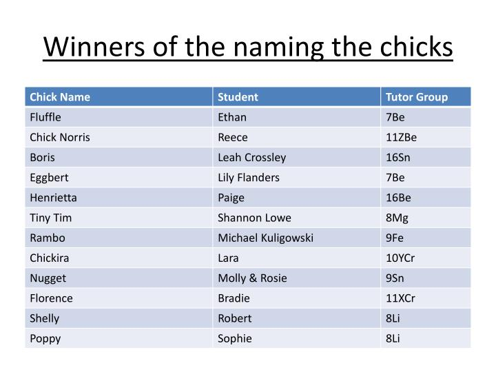winners of the naming the chicks n.