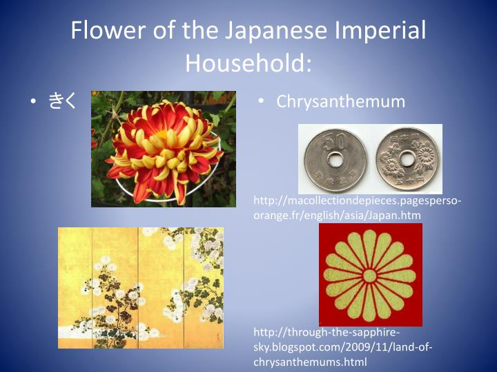 Flower of the Japanese Imperial Household: